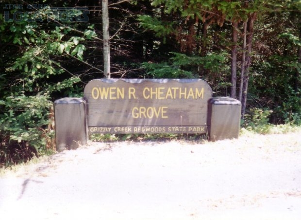 Owen R. Cheatham Grove - Grizzly Creek Redwoods State Park